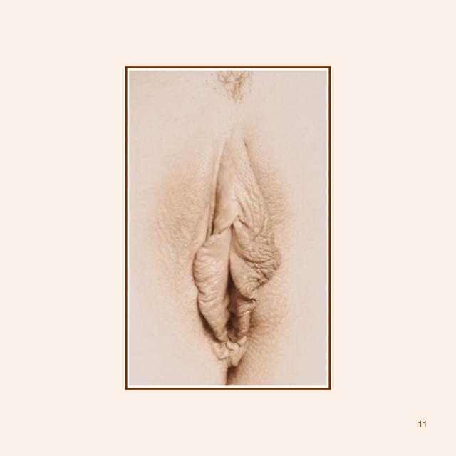 petals-e-book-updated-013_orig