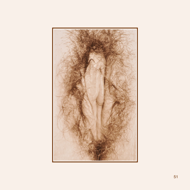 petals-e-book-updated-053_orig